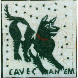 Cave Canem: Pompei grande